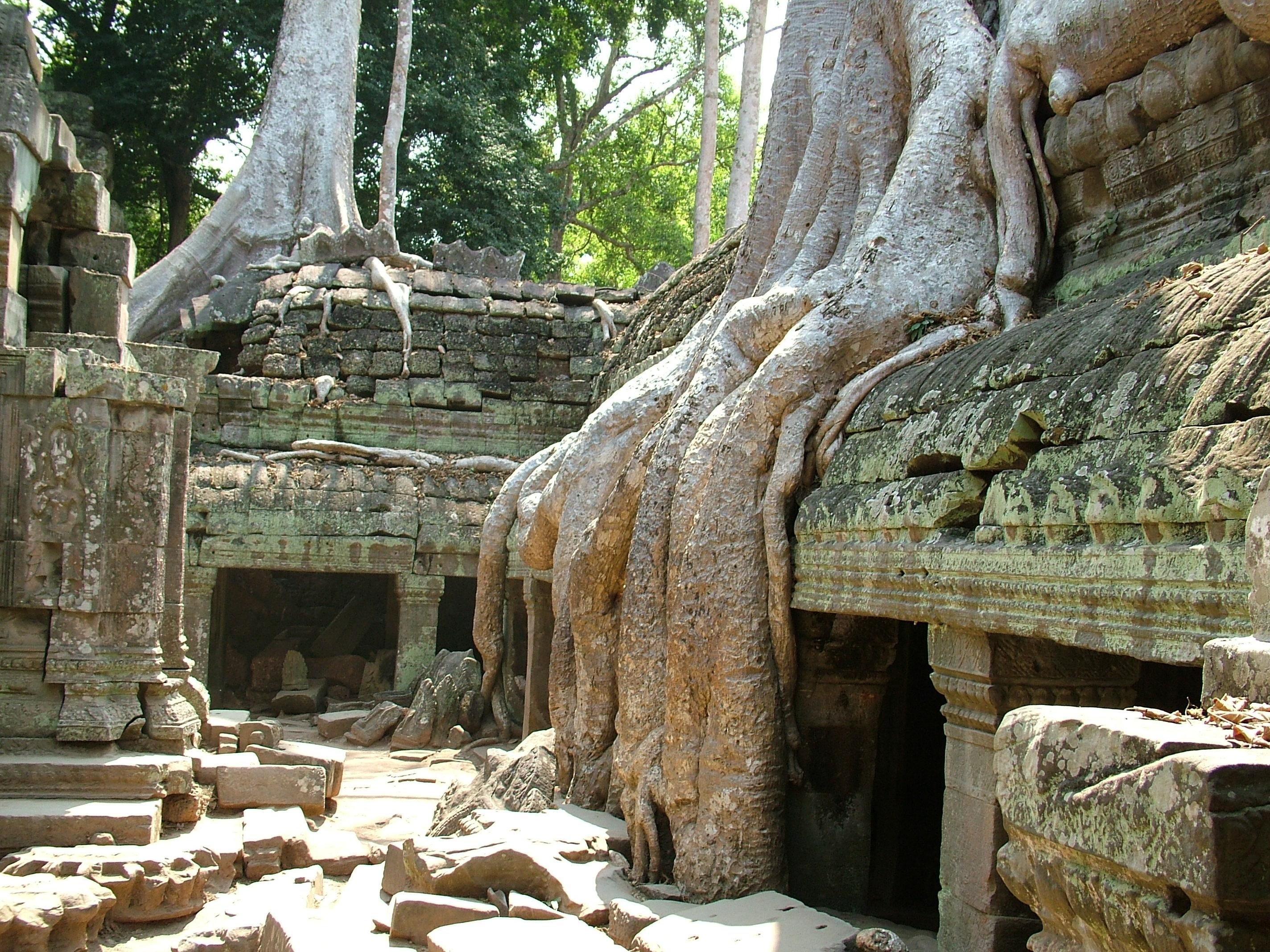 thai4-365.jpg